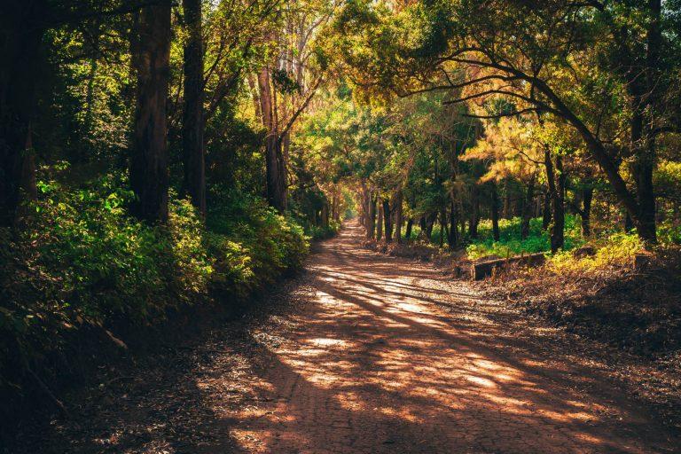 Neben der Spur: Unterwegs mit der S3 – Part 1