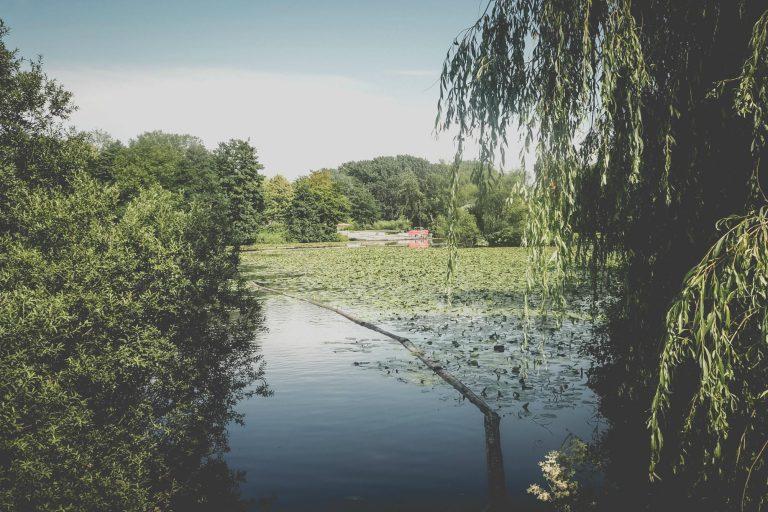 Der Wilhelmsburger Inselpark