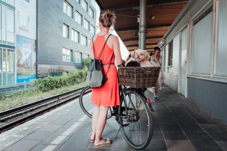 Was darf mit und was nicht? – die Beförderungsmaßnahmen in unseren Bahnen
